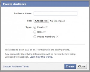 Facebook Create Audience Menu